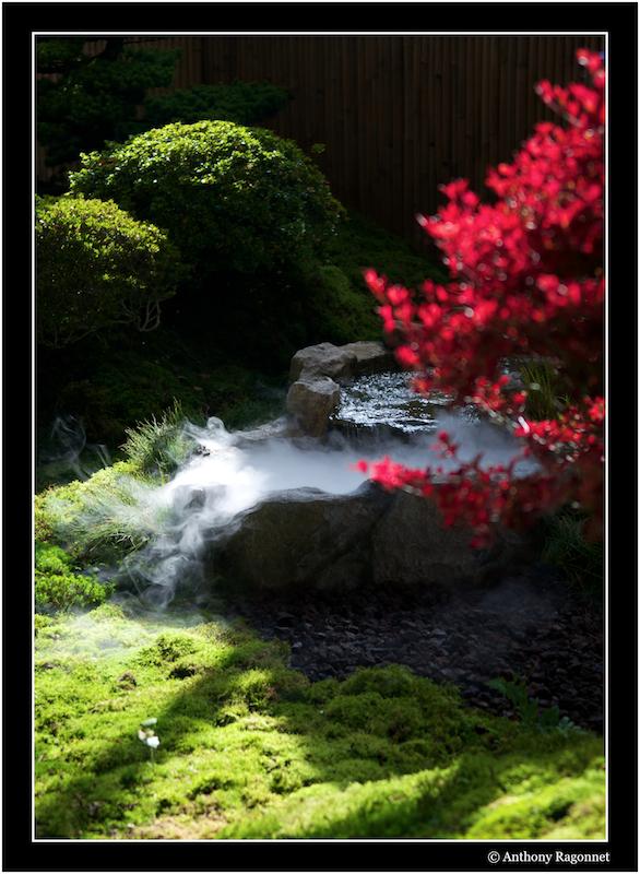 Jardin Japonais Jardinjaponais02