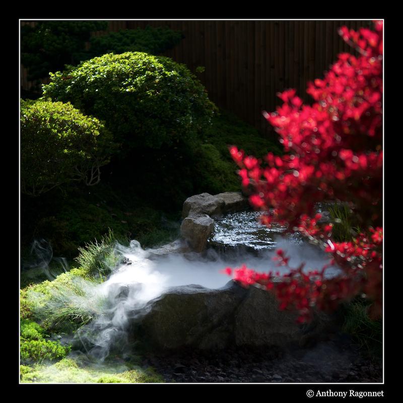 Jardin Japonais Jardinjaponais03